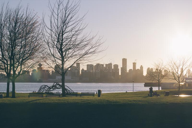 Park Across Lake from City royalty free stock photography