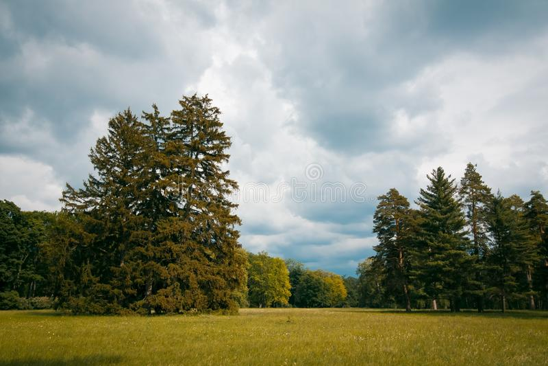 Park Aleksandria Alexandria in Bila Tserkva, Ukraine, beautiful lawn on a sunny spring day, beautiful background. Photo stock image