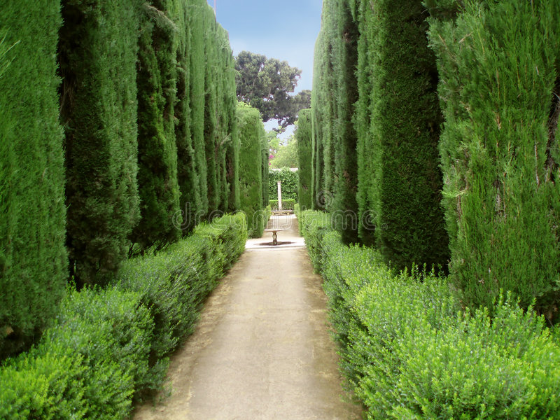 Park in Alhambra royalty free stock image