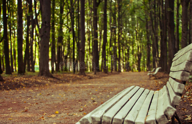 Download Park Alley Stock Photography - Image: 26734962