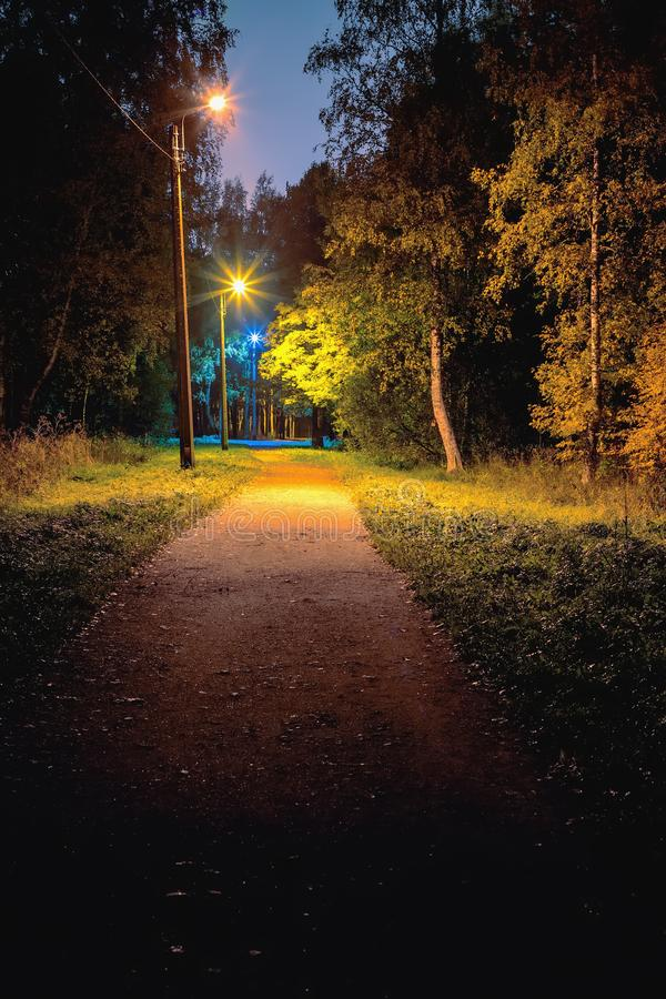 Park alley illuminated by electric lamps with different color temperatures stock photo