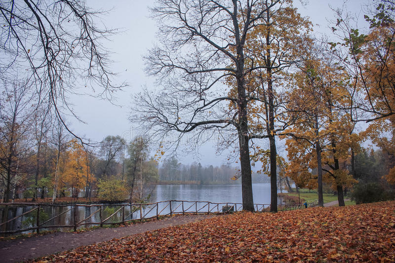 Park in autumn. Gatchina, Leningrad region, summer and park greenery stock photos