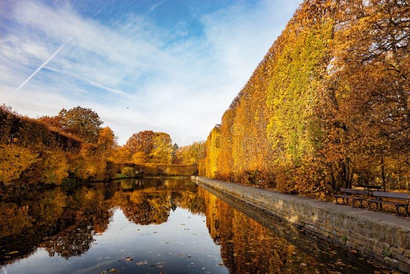 Park in autumn. Pond in the Oliwa park in autumn scenery. Oliwa, Poland stock photos
