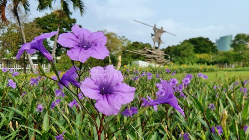Park in Bangkoj lizenzfreies stockfoto