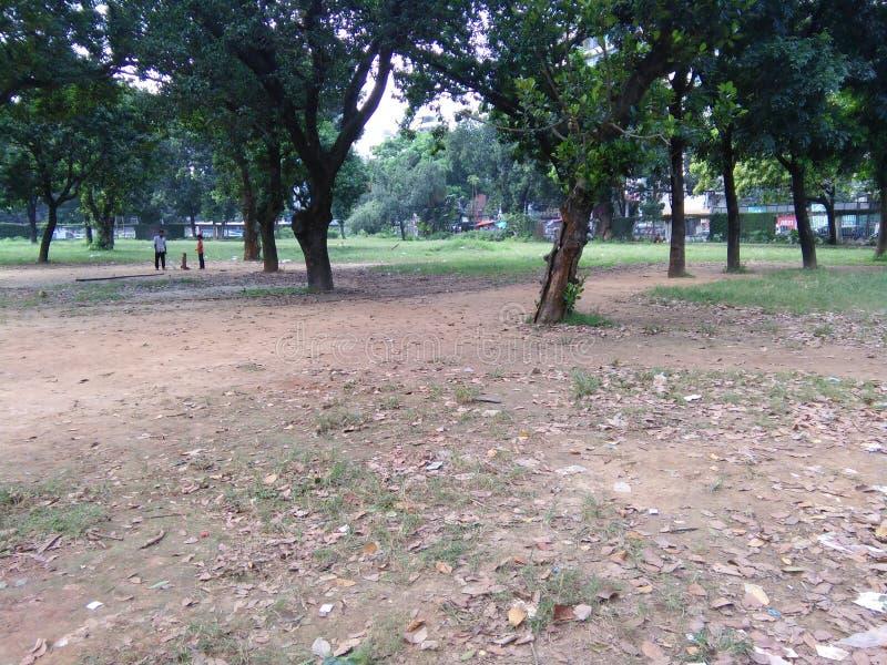Park Bangladesh stock afbeeldingen