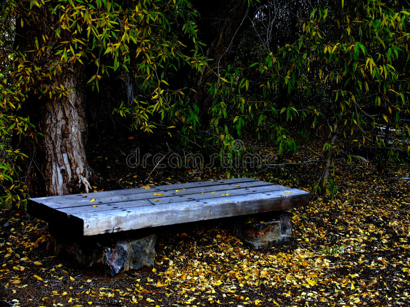 Download Park-Bank stockfoto. Bild von landschaften, espen, herbst - 26896