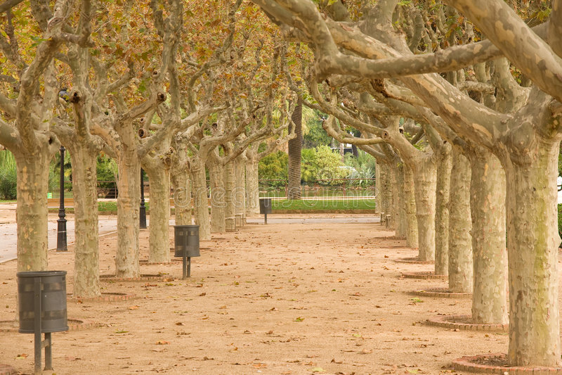 Park in Barcelona royalty free stock photos