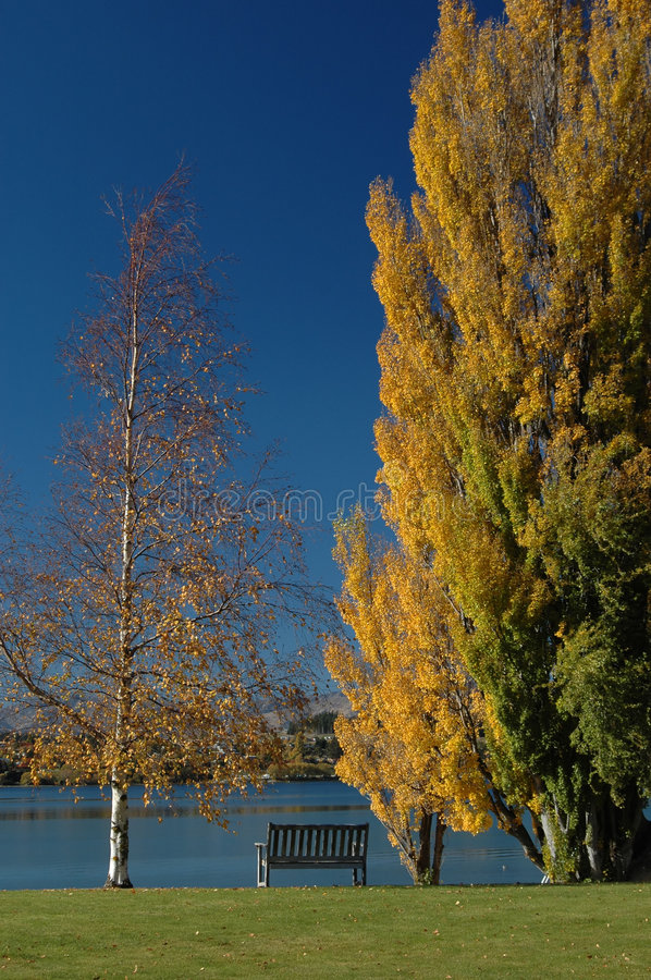 Download Park Bench stock photo. Image of yellow, green, lake, cloudless - 167178
