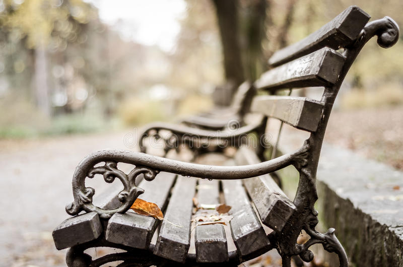 Wooden Park bench in the autumn. stock photo