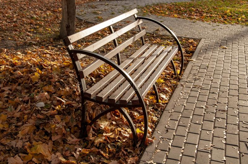 Park bench on the background of fallen autumn leaves and a stone walkway. royalty free stock images