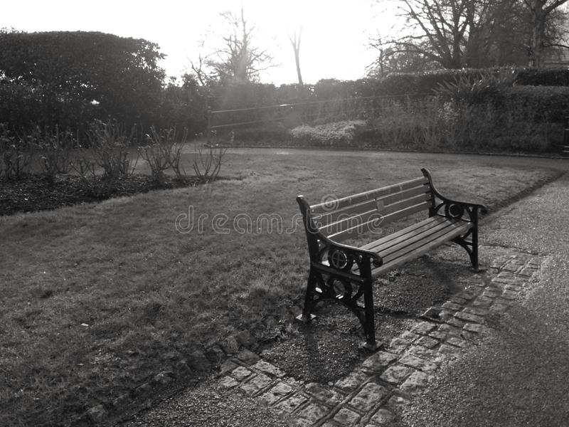 Park Bench in Black and White royalty free stock photo
