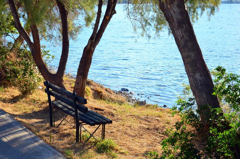 Park Bench Near Sea. A dark painted wooden slat park bench under a shady tree beside gently rippled sea water royalty free stock photography
