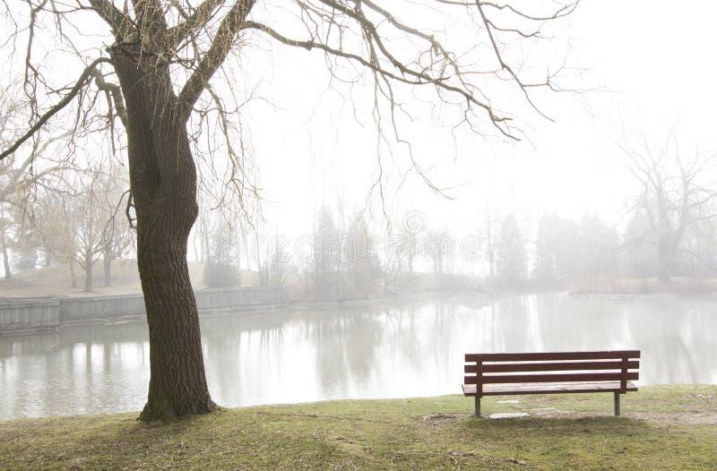 Download Park Bench Overlooks Misty Lake Stock Image - Image: 23966391