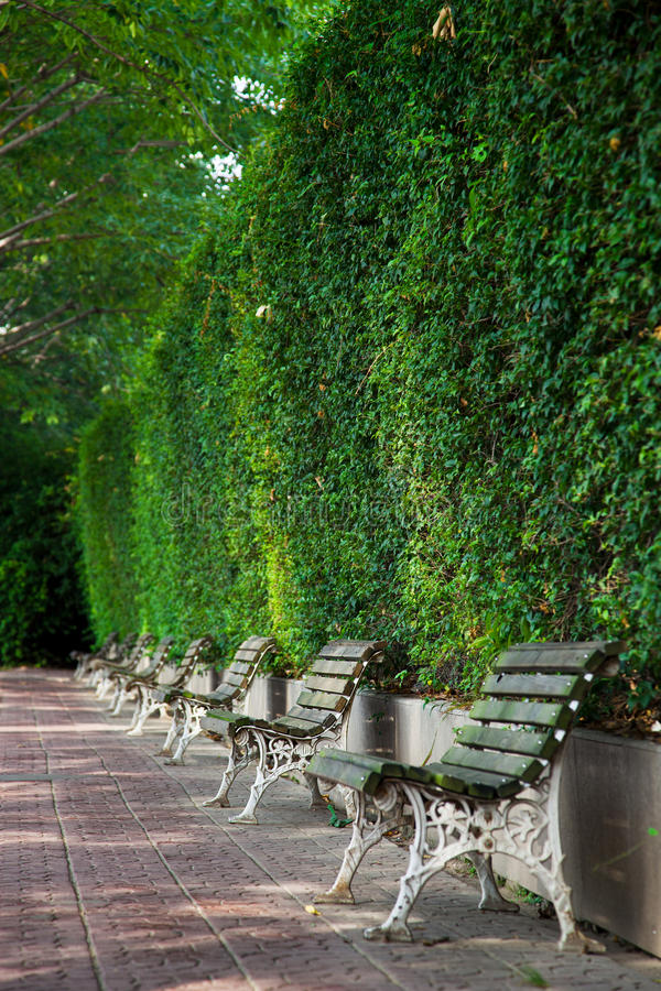 Park bench by park stock image