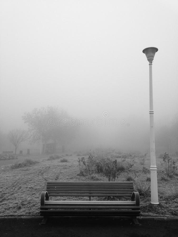 Park bench and pole in the freezing fog