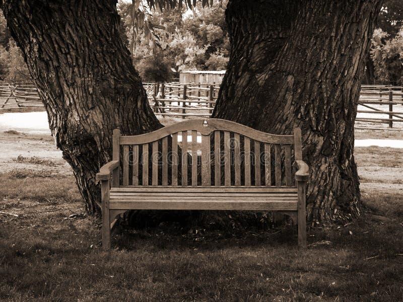 Park bench in sepia stock image