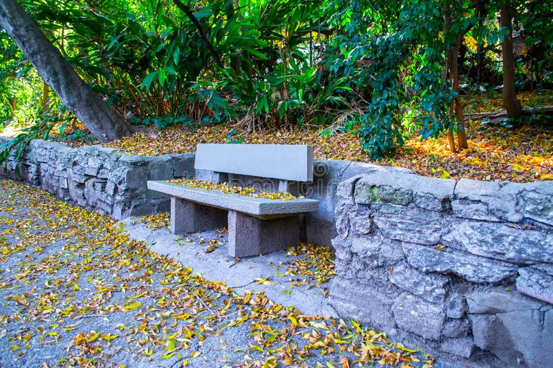 Park bench on stone wall stock photo