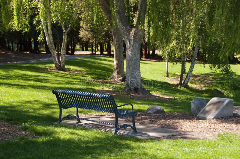 Park bench on a sunny afternoon stock images