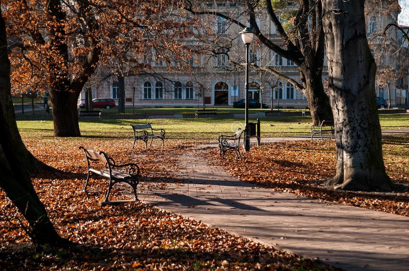 Download Park with benches stock photo. Image of bench, house - 28851716