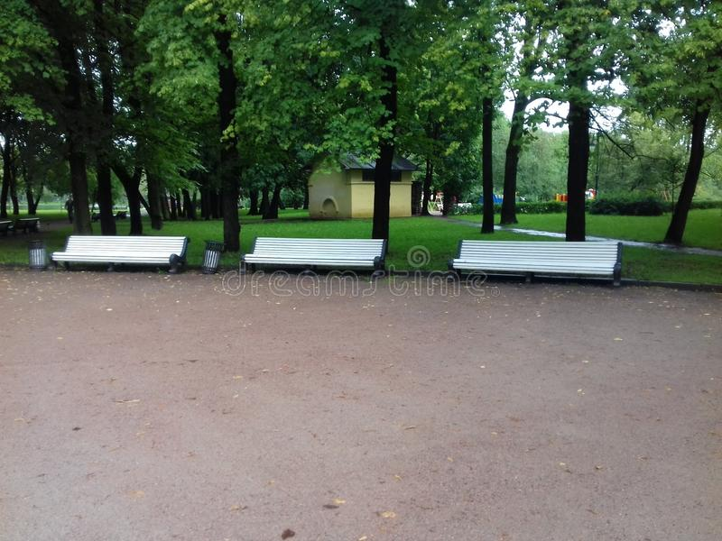 Park benches. royalty free stock images