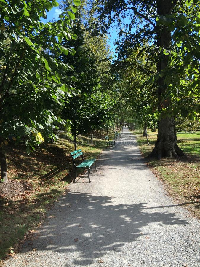 Park Benches in Halifax. Wood slat park benches on gravel path, Halifax Public Gardens, Nova Scotia, Canada in summer royalty free stock images