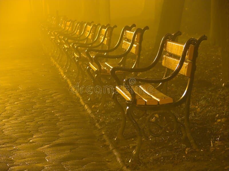 Park benches at night royalty free stock photo