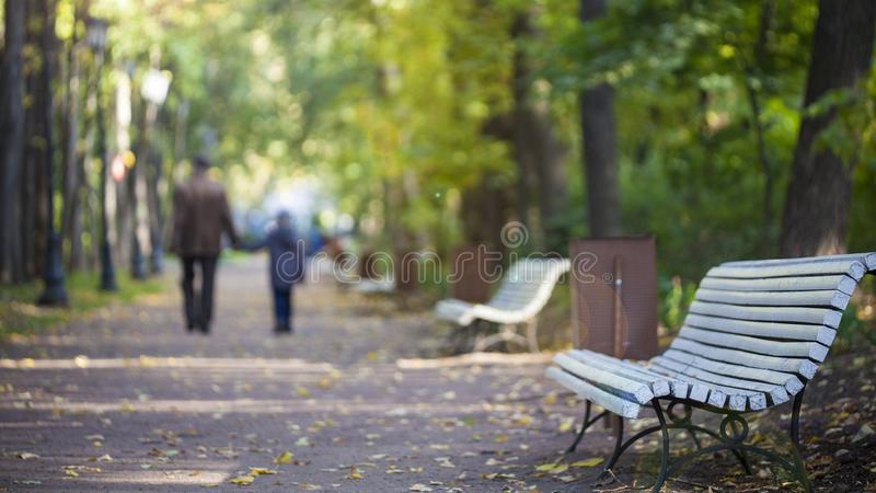 Park benches on walkway royalty free stock images
