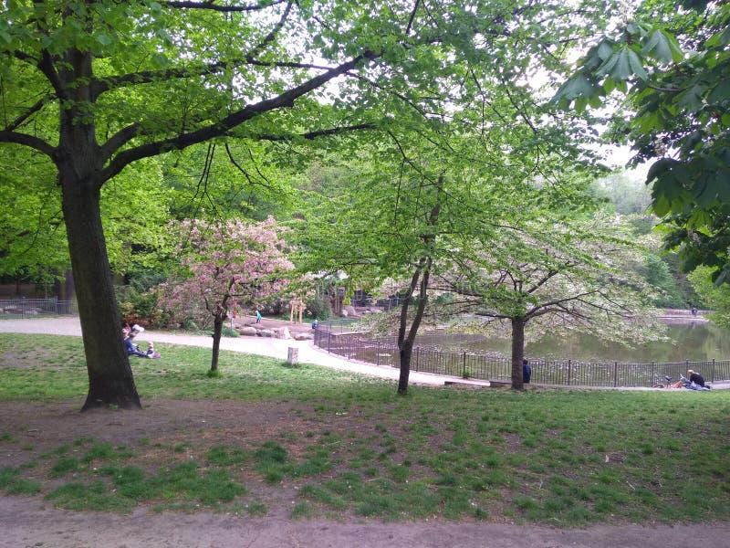 Park Berlin lizenzfreie stockfotos
