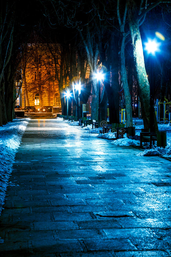 Park bij nacht in de winter stock foto's