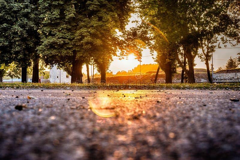Park bij zonsondergang royalty-vrije stock afbeeldingen