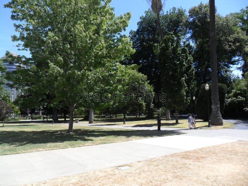 Park blisko Kalifornia Capitol obraz royalty free
