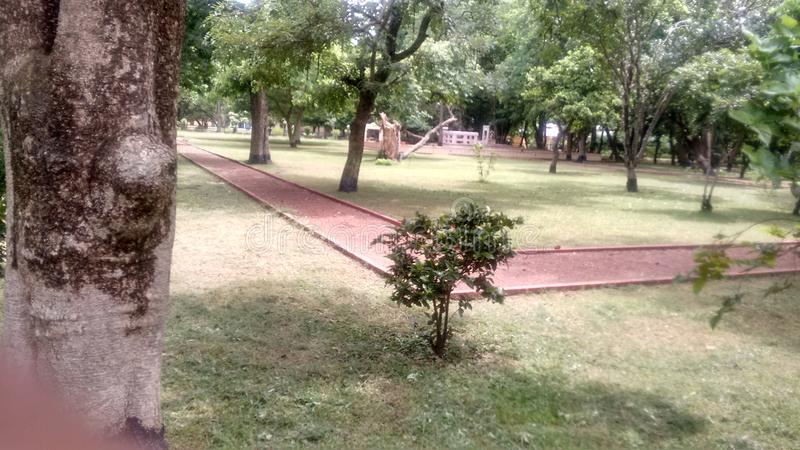 Park. Bolpur shantiniketan park in India nice royalty free stock photography