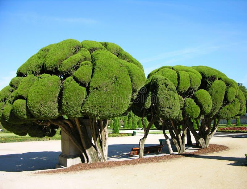 Park Buen-Retiro, Madrid, Spanien stockbild