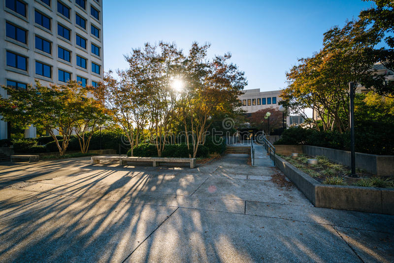 Park and buildings in downtown Winston-Salem, North Carolina. royalty free stock image