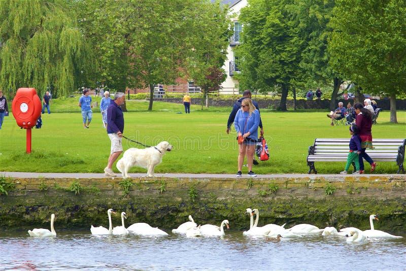 Park in Christchurch, Dorset, het UK royalty-vrije stock afbeelding