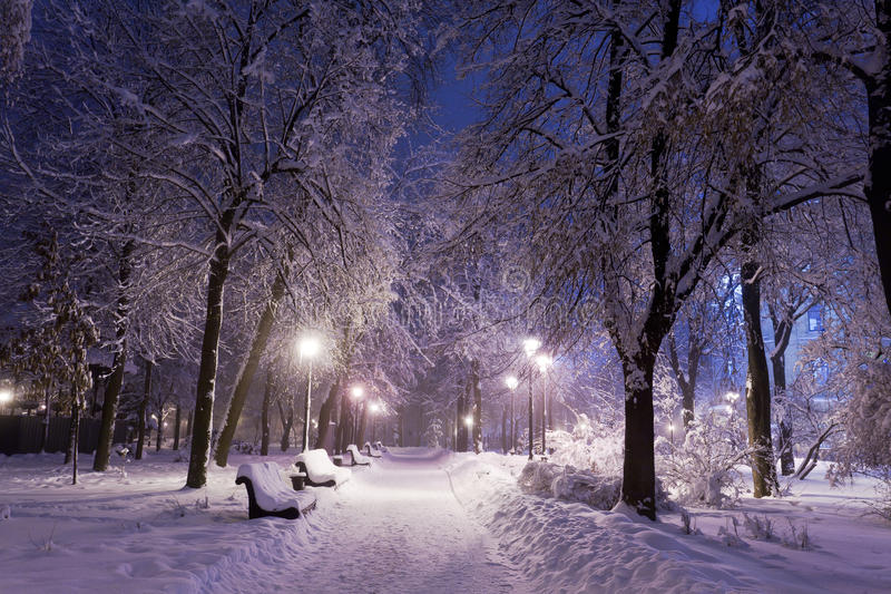 Download Park Covered With Snow At Night. Royalty Free Stock Photography - Image: 23129827