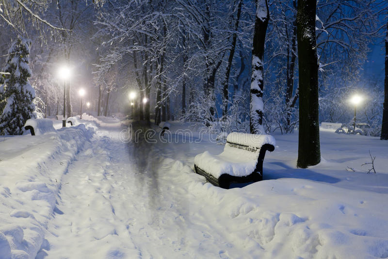 Park Covered With Snow At Night Royalty Free Stock