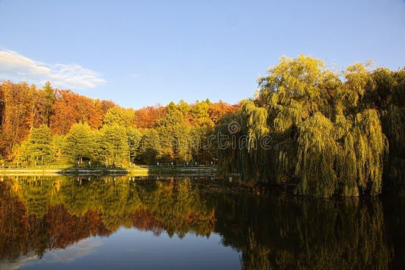 Park in de herfsttijd royalty-vrije stock foto's