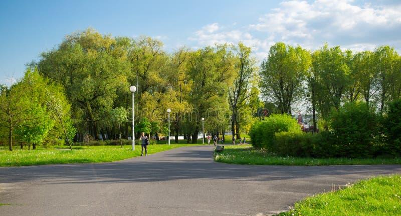 Park in de lente stock afbeeldingen