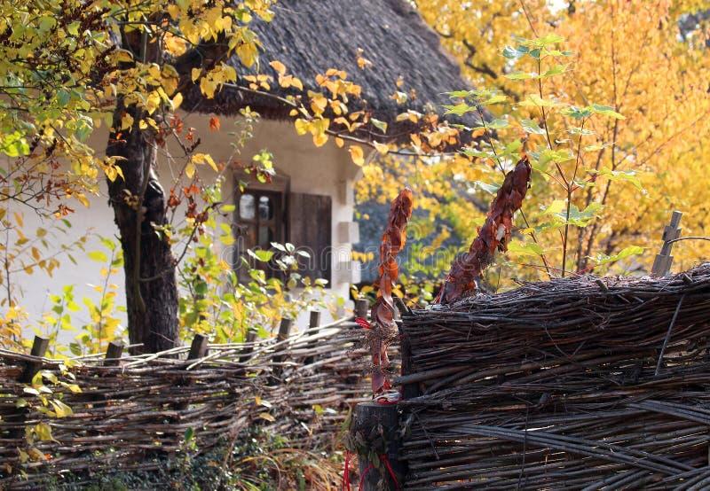 Park in de Oekraïne Huis in het dorp Bloeit overal waar en bomen Huis in het dorp stock foto's