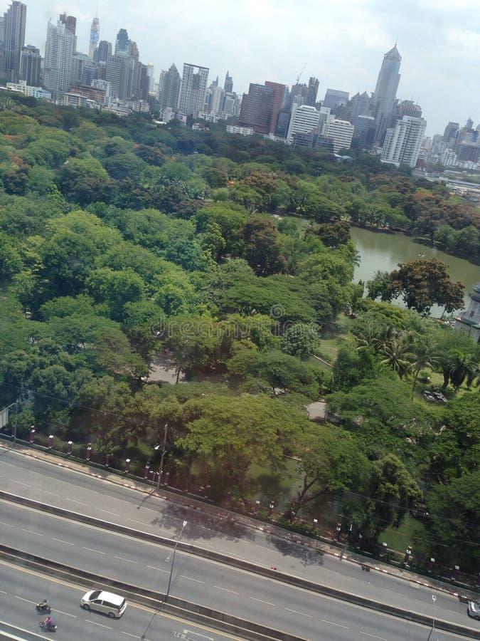 Park in de stad royalty-vrije stock foto's
