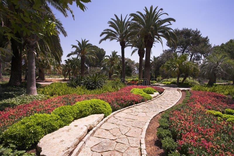 Park in de vroege lente royalty-vrije stock afbeelding