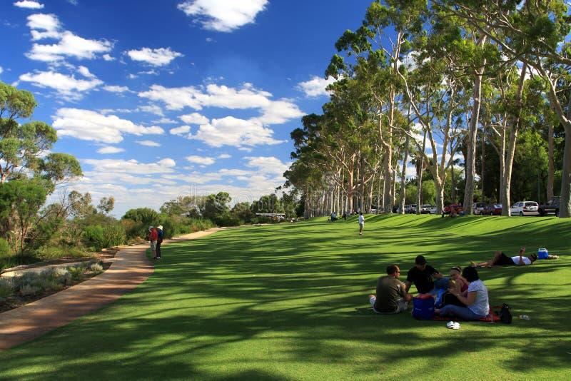 Park del re a Perth, Australia occidentale immagini stock libere da diritti