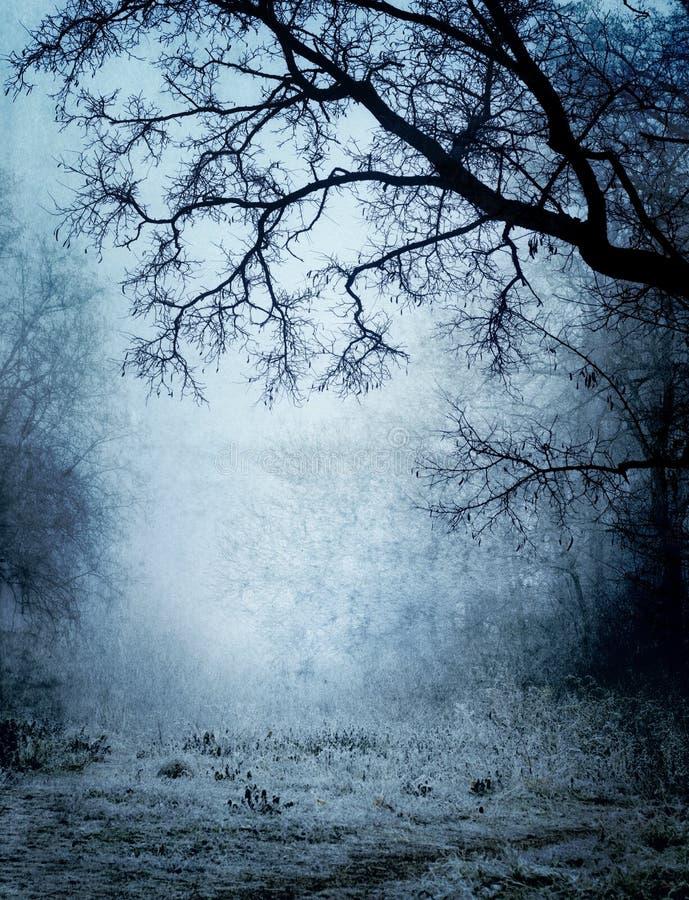 Park in einem Nebel lizenzfreie stockfotografie