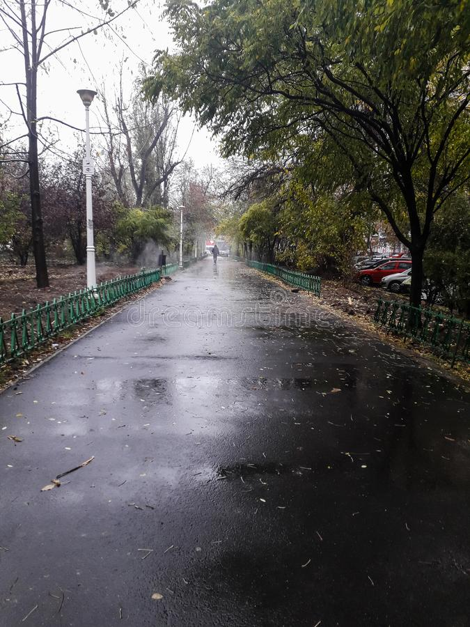 Park an einem Regentag in Bukarest, Rumänien, 2019 lizenzfreies stockbild