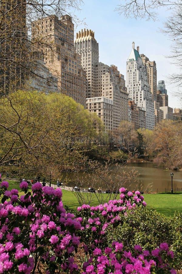 Park in einer Großstadt lizenzfreies stockbild