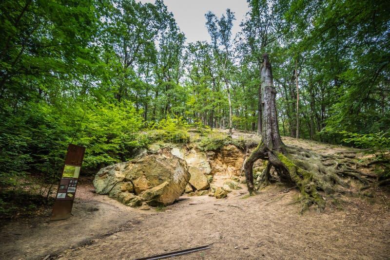"""Park en kasteel """"Star† op Witte Berg in Praag, Tsjechische Republiek royalty-vrije stock foto's"""