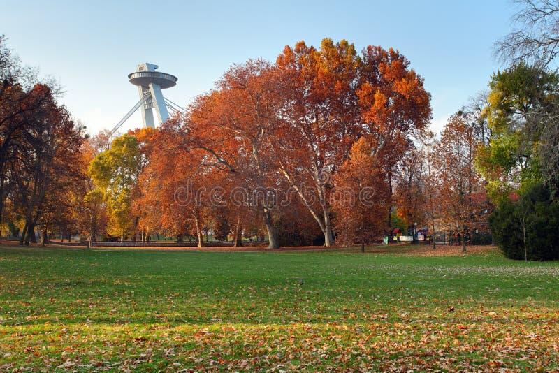 park för höstbratislava stad arkivbild