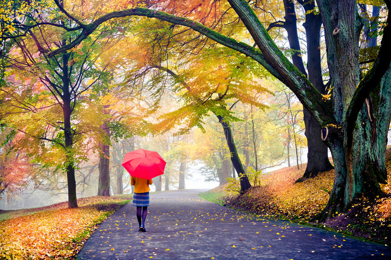 Download Park In Fall Royalty Free Stock Image - Image: 27342406