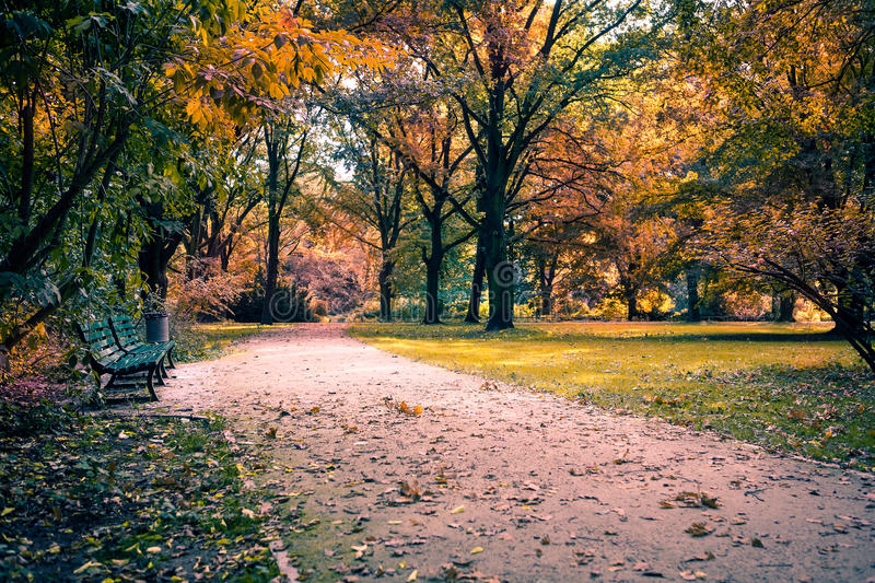 Download Park in fall stock photo. Image of fall, autumn, garden - 27596436